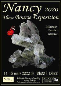 46: e utställningen av fossila mineraler och insekter