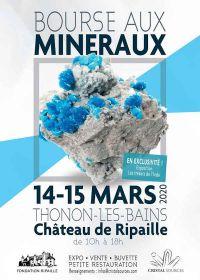 6: e mineraler och fossilbyte