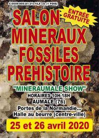 5: e stipendiet Utställning av mineraler och fossilförhistoria