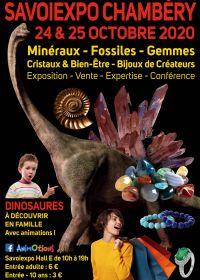 Minéralexpo Chambéry Minerals Fossils Pärlor