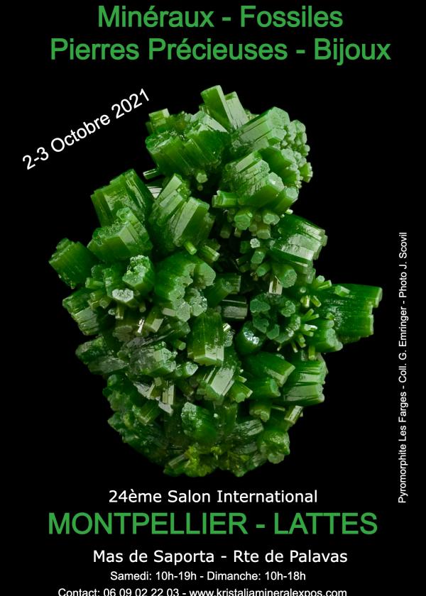 24: e internationella fossila mineralsmycken