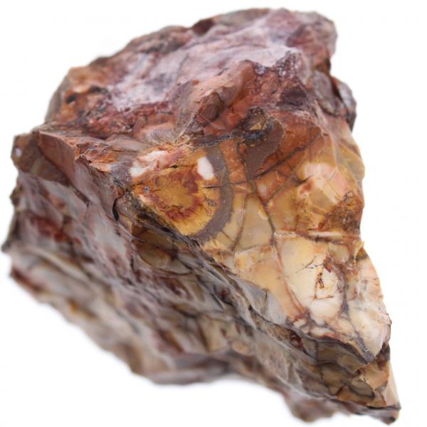 Ocelli jaspis