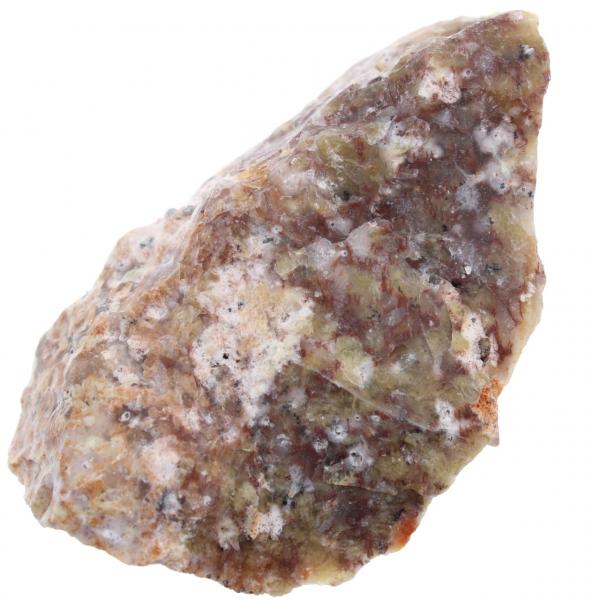 Dendritopal
