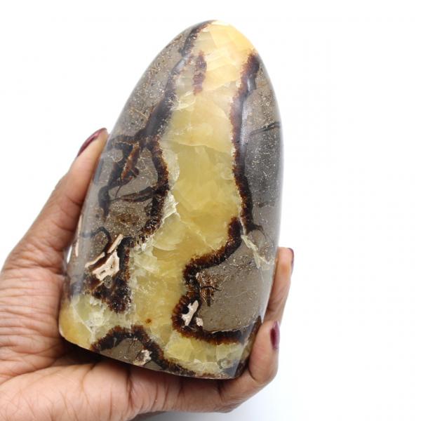 Septaria rock